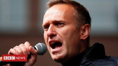 Photo of Alexei Navalny: Moscow court outlaws 'extremist' organisations