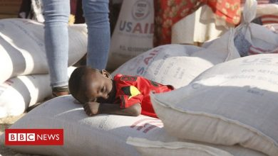 Photo of Ethiopia's Tigray crisis: UN aid chief says there is famine