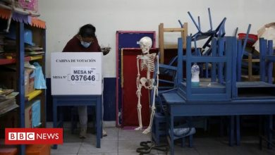 Photo of Peru: No serious irregularities in presidential run-off, say observers