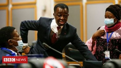 Photo of Pan-African Parliament: Punches, kicks and death threats