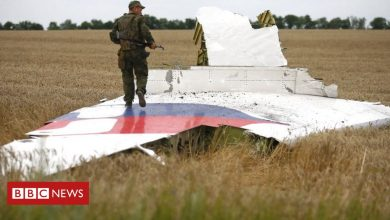 Photo of MH17 plane crash: Horror and hope for families as trial starts