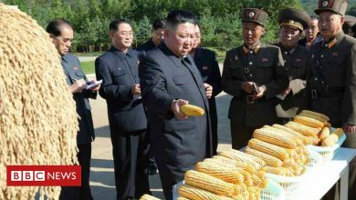 Photo of North Korea: Why doesn't it have enough food this year?