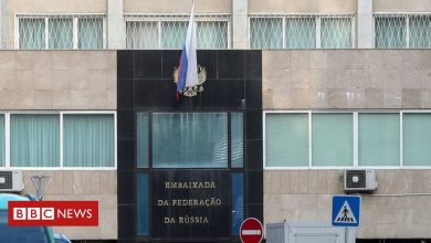 Photo of Lisbon gave protesters' data to foreign embassies