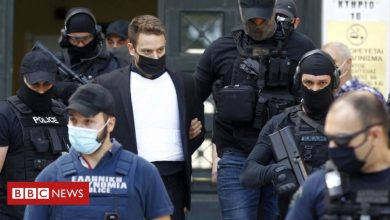 Photo of Greece killing: Pilot gives five-hour testimony in court