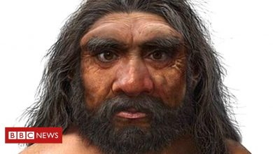 Photo of Scientists hail stunning 'Dragon Man' discovery