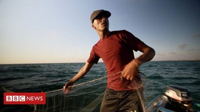 Photo of Fishing in Gaza's troubled waters