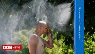 Photo of Canada weather: Dozens dead as heatwave shatters records