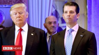 Photo of Trump Organization indicted in tax investigation, US media report