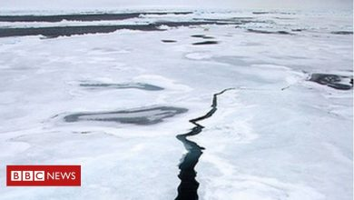 Photo of Then and now: Arctic sea-ice feeling the heat