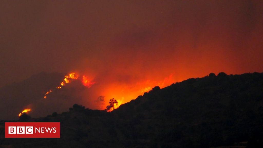 cyprus-appeals-for-help-as-huge-wildfire-rips-through-forest