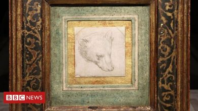 Photo of Da Vinci bear drawing expected to fetch up to £12m at auction