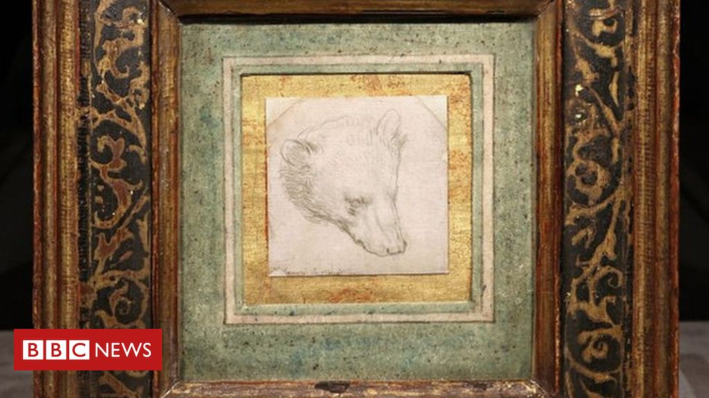 da-vinci-bear-drawing-expected-to-fetch-up-to-12m-at-auction