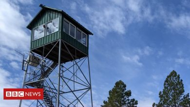 Photo of Fire lookouts: The US Forest Service lookouts watching for fires