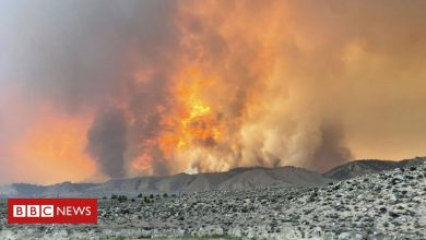 Photo of US heatwave: Wildfires rage in western states as temperatures soar