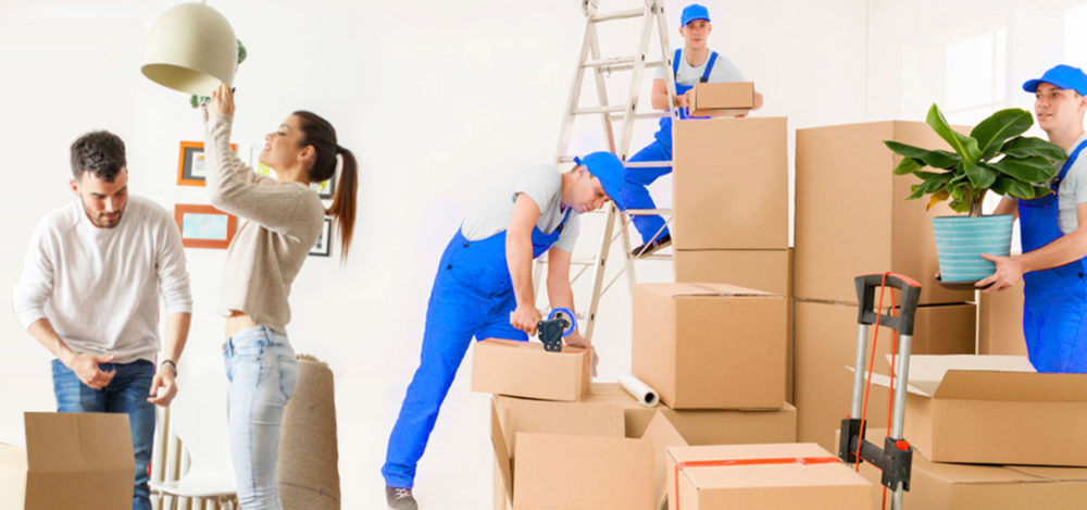 book-house-shifting-packers-and-movers-services-at-affordable-costs
