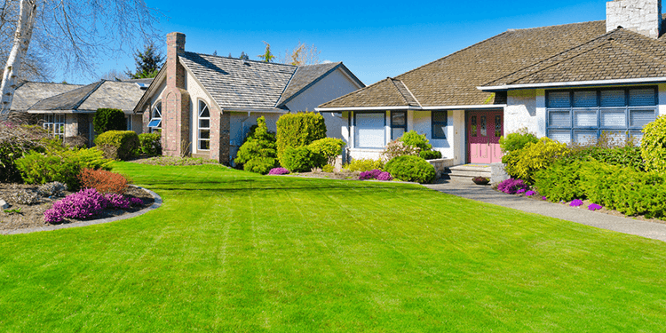 how-artificial-grass-will-be-beneficial-for-your-garden-or-lawn?