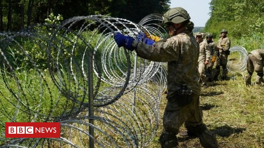 lithuania-votes-to-curb-influx-of-migrants-from-belarus