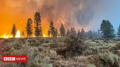 Photo of Oregon Bootleg Fire: Evacuations as largest US fire burns 300,000 acres
