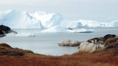 Photo of Greenland ditches oil exploration efforts after 50 years of failure