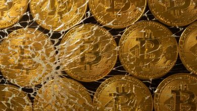 Photo of Bitcoin plunges below $30,000 amid broader cryptocurrency market sell-off