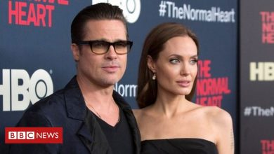 Photo of Angelina Jolie wins appeal to remove judge from Brad Pitt divorce case