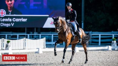 Photo of Dressage: How to make a horse dance