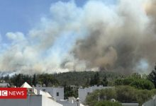 Photo of Turkey: Foreign tourists evacuated as wildfires threaten resorts