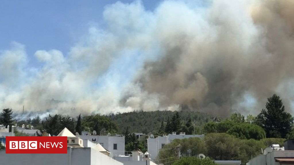 turkey:-foreign-tourists-evacuated-as-wildfires-threaten-resorts