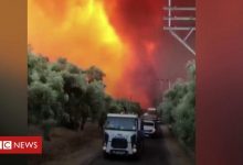 Photo of Turkey: People flee popular tourist spots to escape wildfires