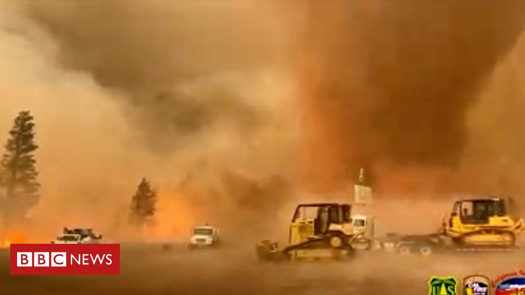 then-and-now:-the-burning-issue-of-wildfires