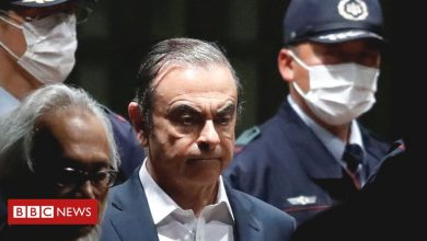 Photo of The downfall of Nissan's Carlos Ghosn: An insider's view