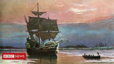 Photo of Mayflower 400 years: How many people are related to the Mayflower pilgrims?