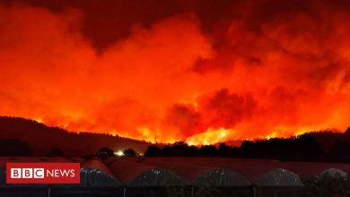 Photo of Greece fires spread uncontrolled, killing a fireman