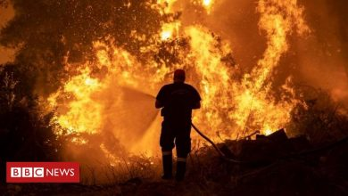 Photo of Greece wildfires: Evia island residents forced to evacuate