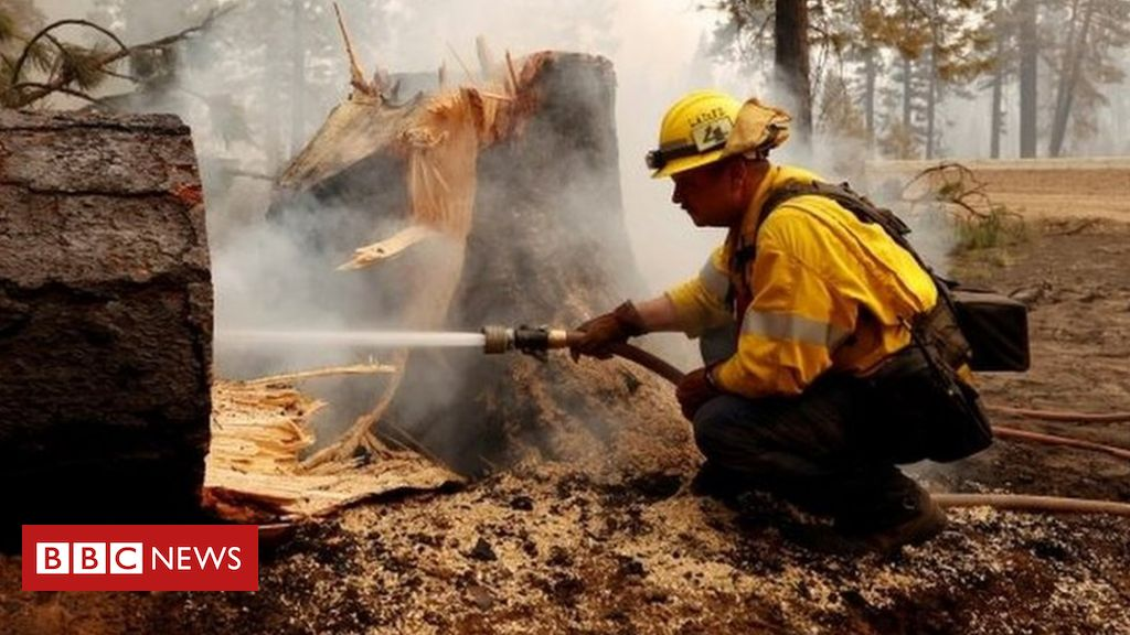 dixie-fire:-firefighters-tackle-historic-california-wildfire