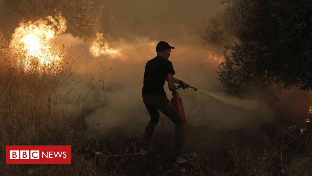 greece-wildfires:-'it's-like-a-horror-movie-but-it's-real-life'