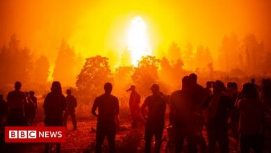 Photo of Wildfires: How are they linked to climate change?