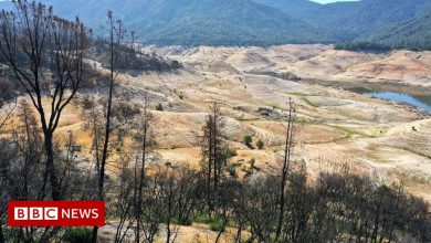 Photo of Images show decline of California's 'life source'