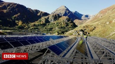 Photo of Could this solar farm be a climate change solution?