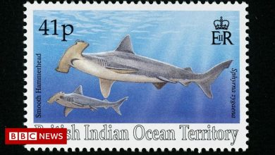 Photo of British stamps banned from Chagos Islands in Indian Ocean