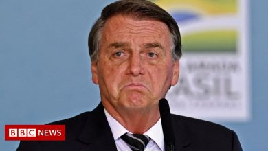 Photo of Brazil's Jair Bolsonaro says he will be killed, arrested or re-elected