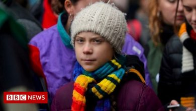 Photo of Greta Thunberg: 'I'll go to COP26 if it's safe and democratic'