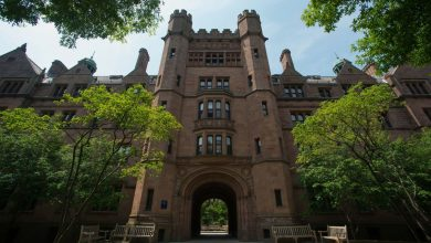 Photo of Yale's Endowment Has Just 2% in U.S. Stocks. Don't Expect Major Changes Under the New Investment Chief.