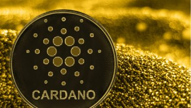 Photo of Cardano Falls 10% In Rout