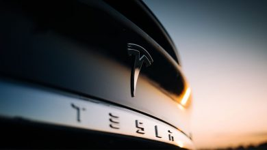 Photo of ARK Invest Stocks To Buy And Watch: 6 Stocks That Cathie Wood's ARK ETFs Own; Tesla Sells Off