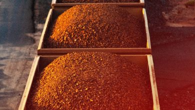 Photo of Iron-Ore Prices Keep Falling. These Mining Stocks Are Being Hit.