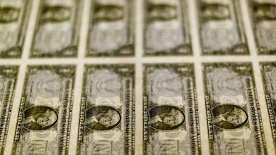 Photo of Dollar set for best week since June on expected Fed tightening