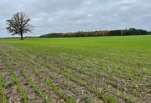 Photo of Dollars in the dirt: Big Ag pays farmers for control of their soil-bound carbon